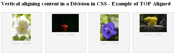 HTML_CSS_vertical_align_vertical_top_aligned_images